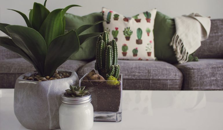 4 Home Decor Tips For Any Home